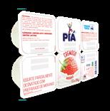 Iogurte Parcialmente Desnatado com Preparado de Morango - 720g