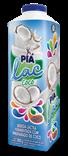 Bebida Láctea Fermentada com preparado de coco - 1000g